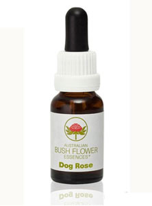AUSTRALIAN BUSH FLOWER ESSENCES - DOG ROSE - 15 ML