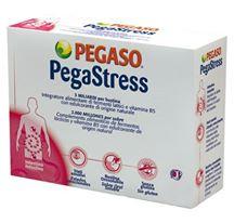 PEGASTRESS 18 BUSTINE DA 1,5