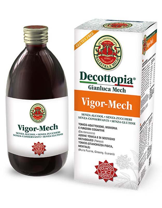 VIGOR MECH FLACONE 500 ML