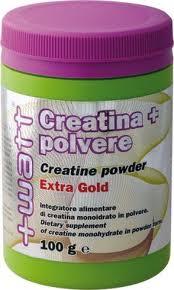 WATT CREATINA + POLVERE EXTRA GOLD - INTEGRATORE ALIMENTARE DI CREATINA - 100 G