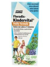 SALUS FLORADIX KINDERVITAL® FRUITY FORMULA 250 ML