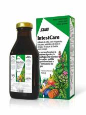 SALUS INTESTCARE 250 ML