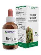 PSC RIBES NIGRUM GOCCE 15 ML