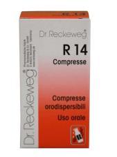 RECKEWEG R14 100 COMPRESSE